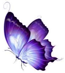 butterfly clipart tattoo blue clipartpig