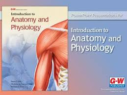 Anatomy And Physiology The Muscular System The Muscular System 5 Lesson 5 1 Muscle Tissue Categories And