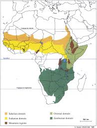 Africa Time Zone Map by Africa Online Vegetation And Plant Distribution Maps Library