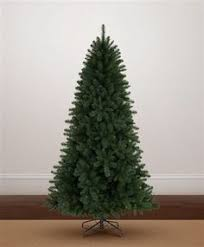 seven foot 7 bristle pine tree bells morgue pine