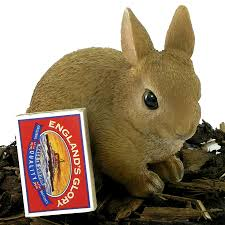 baby rabbit resin garden ornament 4 74 garden4less uk shop