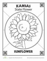 alabama state flower alabama worksheets and us states