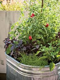 home veggie garden ideas container vegetable gardening ideas pinterest home outdoor