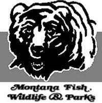 Bears Montana Hunting And Fishing - hunting news page 10 of 40 stockton outfitters