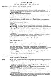 resume template administrative w experience project 2020 uc sustainability analyst resume sles velvet jobs