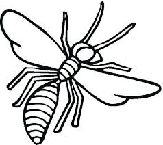 coloring pages insects bugs bug coloring pages free printable insect coloring pages insect