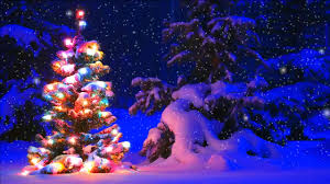 buy beautiful christmas tree with sequins xmas tree with sparkle