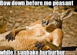 Bow Down Meme - meme creator bow down before me peasant while i sunbake hurhurhur