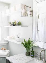 Bathroom White Shelves Floating Bathroom Shelves What S Best For Plants