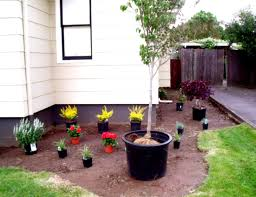 landscaping surprising small backyard landscape ideas for your