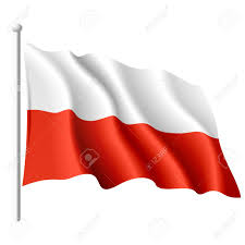 7 597 poland flag stock vector illustration and royalty free