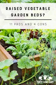 raised vegetable garden beds 11 pros and 4 cons tenth acre farm