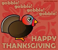 happy thanksgiving irregular blogging