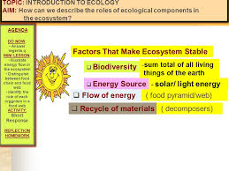 what is ecology origin of the word u2026 u201d ecology u201d greek origin