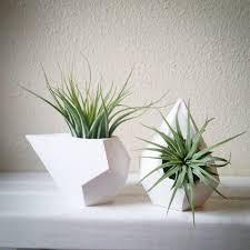 geometric mini planters set of teardrop dodecahedron air