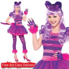 teen cheshire cat fancy dress girls book week costume age