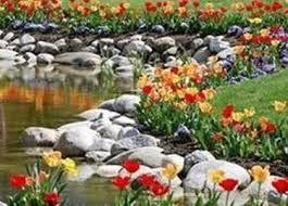 come creare un giardino fai da te come creare un giardino roccioso giardino fai da te