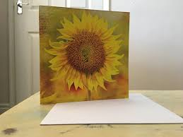 greetings cards birthday cards cards blank cards