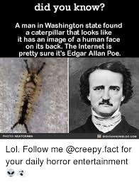 Edgar Allen Poe Meme - did you know a man in washington state found a caterpillar that