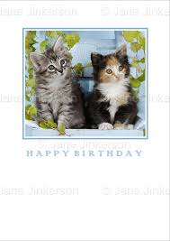 maine coon cat tabby kittens birthday card by jane jinkerson