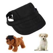Cute Dog Products by Compare Prices On Dog Baseball Online Shopping Buy Low Price Dog