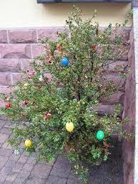 easter egg trees easter egg trees an easter tradition republic germany
