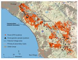 Santa Ana California Map Southern California Mountain Lions U0027 Genetic Connectivity