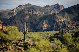 Arizona scenery images A majestic scenic drive in arizona the bush highway jpg