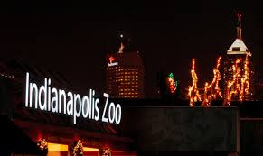 christmas at the zoo and a contest too the indiana insider blog