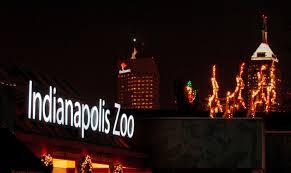 christmas lights at the zoo indianapolis christmas at the zoo and a contest too the indiana insider blog