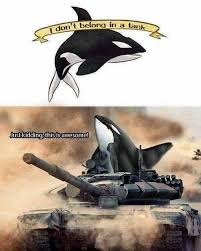 Whaling Meme - poem whale war iii the klute