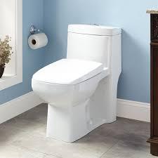 winslow dual flush siphonic elongated one piece toilet ada