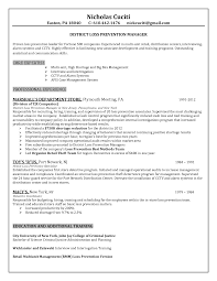 Job Resume Business by Loss Prevention Resume Haadyaooverbayresort Com