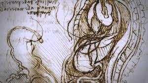 da vinci documentary on the anatomical drawings of leonardo da