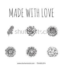 hand drawn floral sketches set collection stock vector 722489611