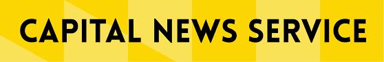 backyard beekeeping gaining popularity in maryland u2013 cns maryland