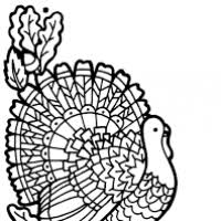 turkey clipart black and white free page 7 clipart ideas u0026 reviews