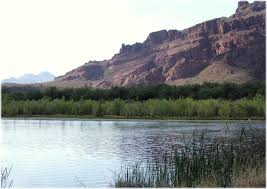 Arizona rivers images Lower salt and gila rivers ecosystem arizona important jpg