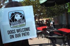 Dog Patio Several Twin Cities Patios Welcome Dogs With Their Diners U2013 Twin