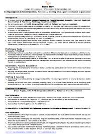 resume format for mis profile over 10000 cv and resume samples with free download free resume