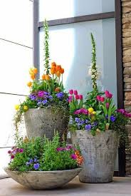 Plants For Patios In The Shade Best 25 Garden Pots Ideas On Pinterest Potted Plants Container