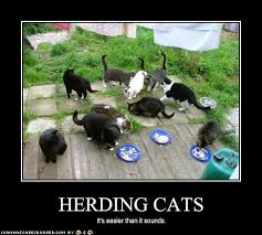 Herding Cats Meme - quotes about herding cats 21 quotes
