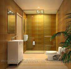Decorating Ideas For Small Bathrooms In Apartments Small Bathroom Designs With Shower Only Decorating Ideas On A