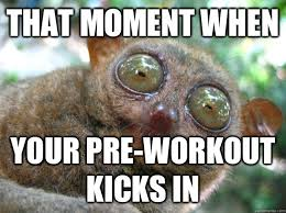 Pre Workout Meme - that moment when your pre workout kicks in achievement tarsier