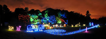 Zoo Lights Discount Tickets Riverbanks Zoo Lights Before Christmas Christmas Village