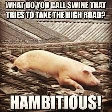 Ham Meme - ambitious ham by grumbledude meme center