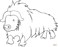 yak from himalayan coloring page free printable coloring pages