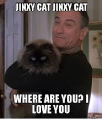 Where Are You Memes - jinxy cat jinxy cat where are you love you memes com cat meme