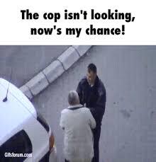 Funny Gifs And Memes - getaway funny pics funny gifs funny videos funny memes funny