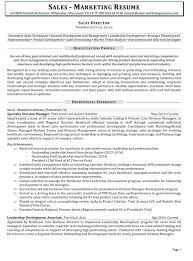 Sales Marketing Resume Sample by Sample Resume For Sales And Marketing Professional
